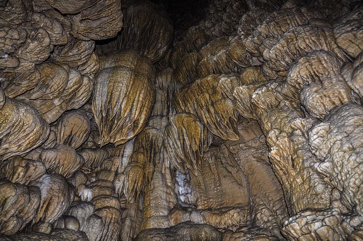 oregon caves nm