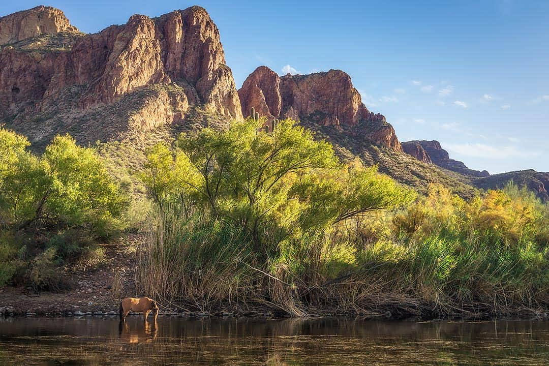 Rivers & Lakes: Guide to the Best Camping in Arizona Near Water