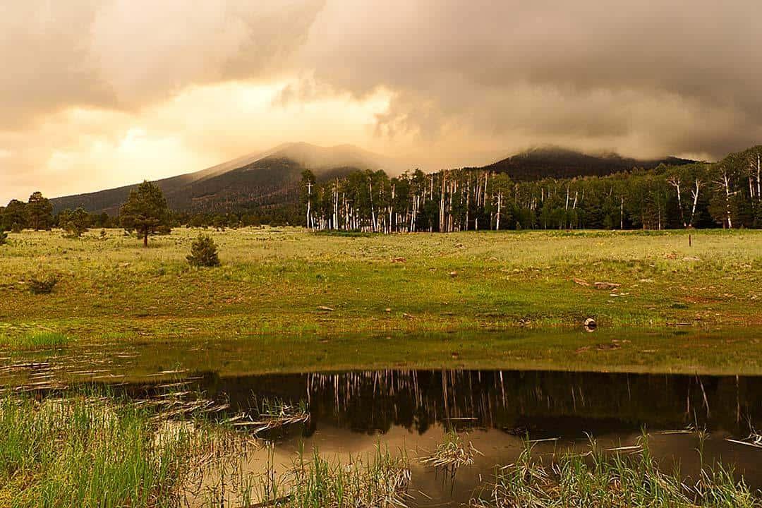 Aspen-Corner-Hike-Flagstaff