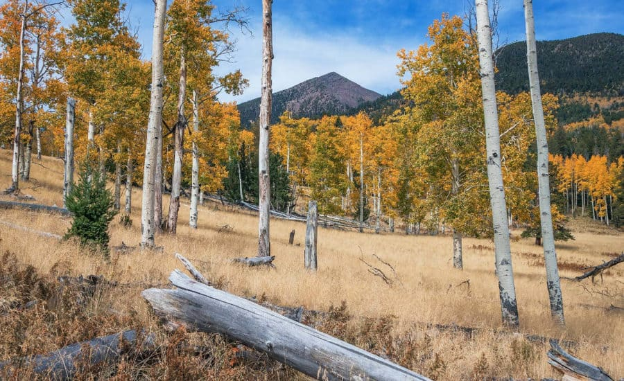 best hiking near flagstaff