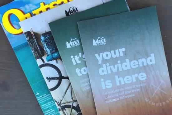REI dividends 2019