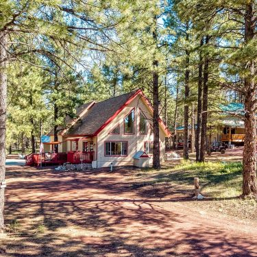 cabin rentals williams arizona