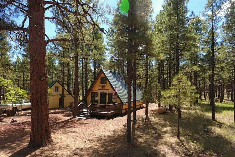 cozy cabin williams