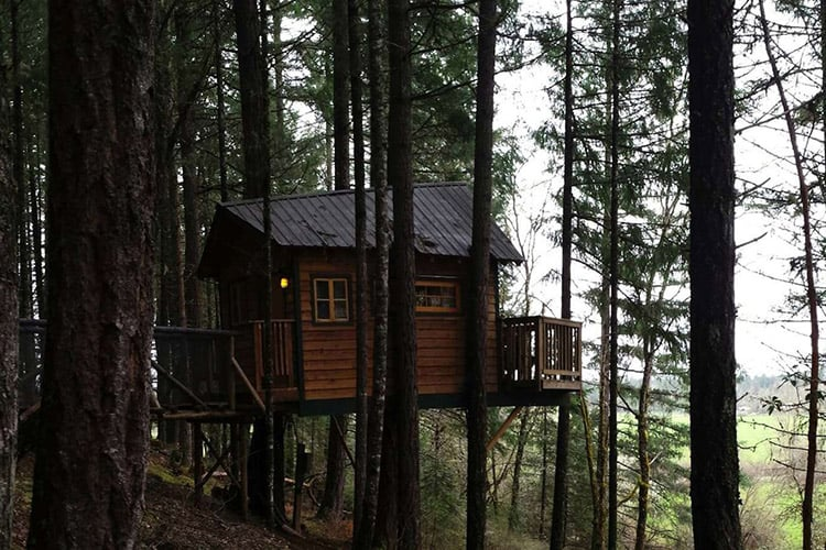 7 Epic Treehouse Rentals In Oregon