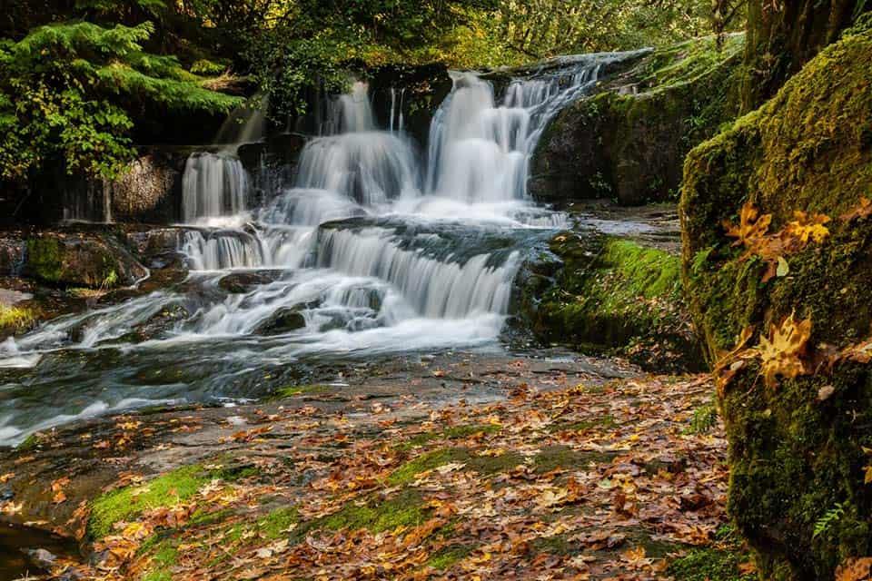 alsea falls autumn