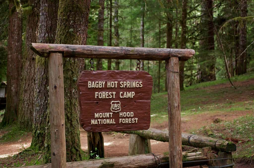 Bagby Hot Springs, Mt. Hood National Forest, Oregon