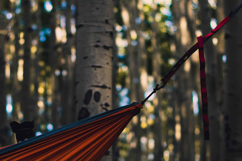 best hammock tree straps