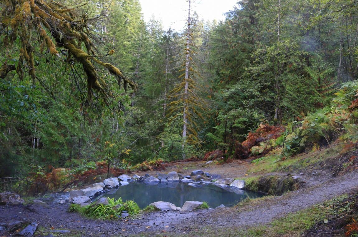 washington hot springs