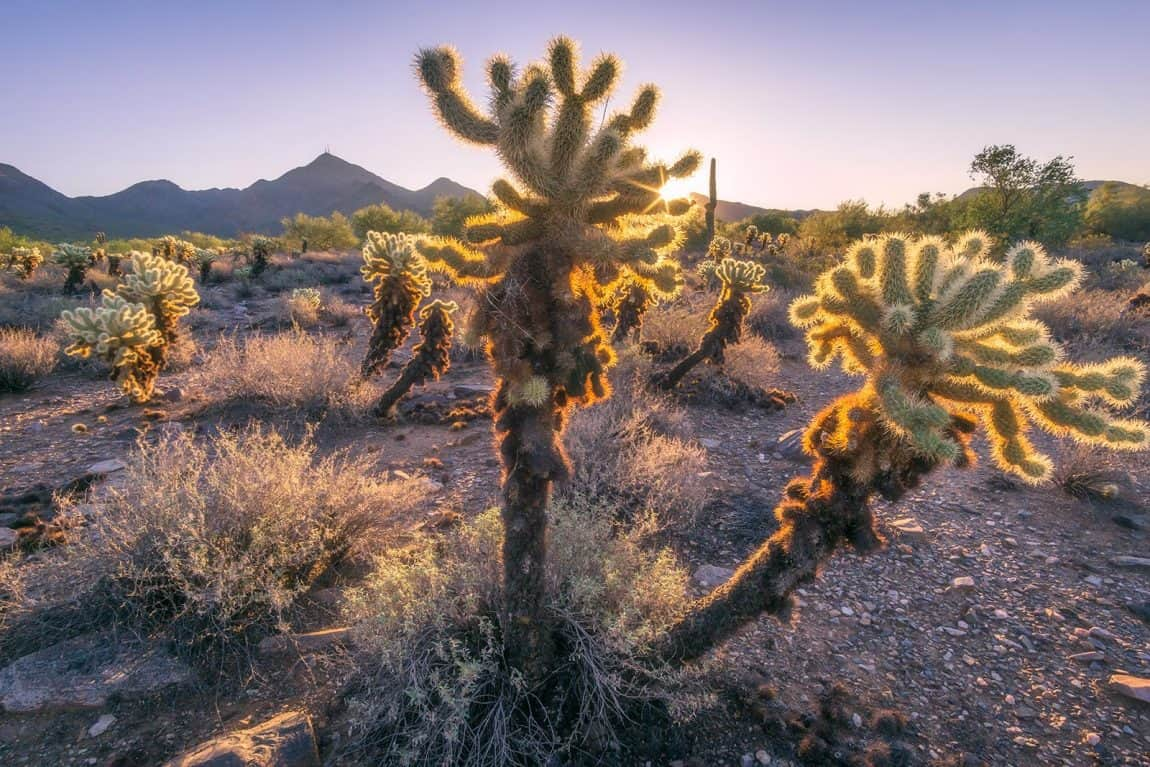best hikes scottsdale