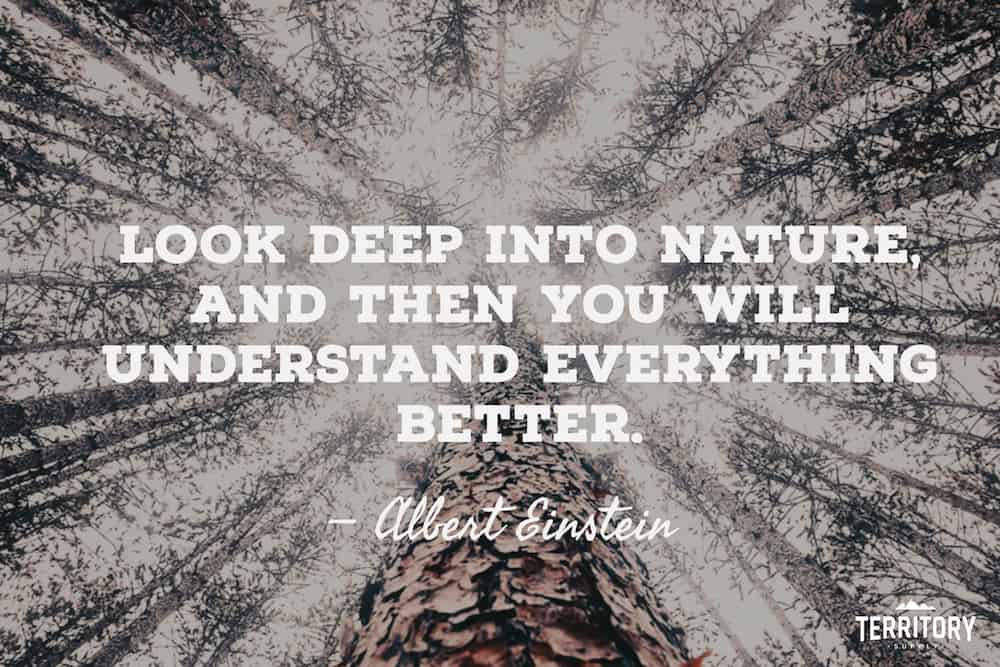 Camping quote albert einstein