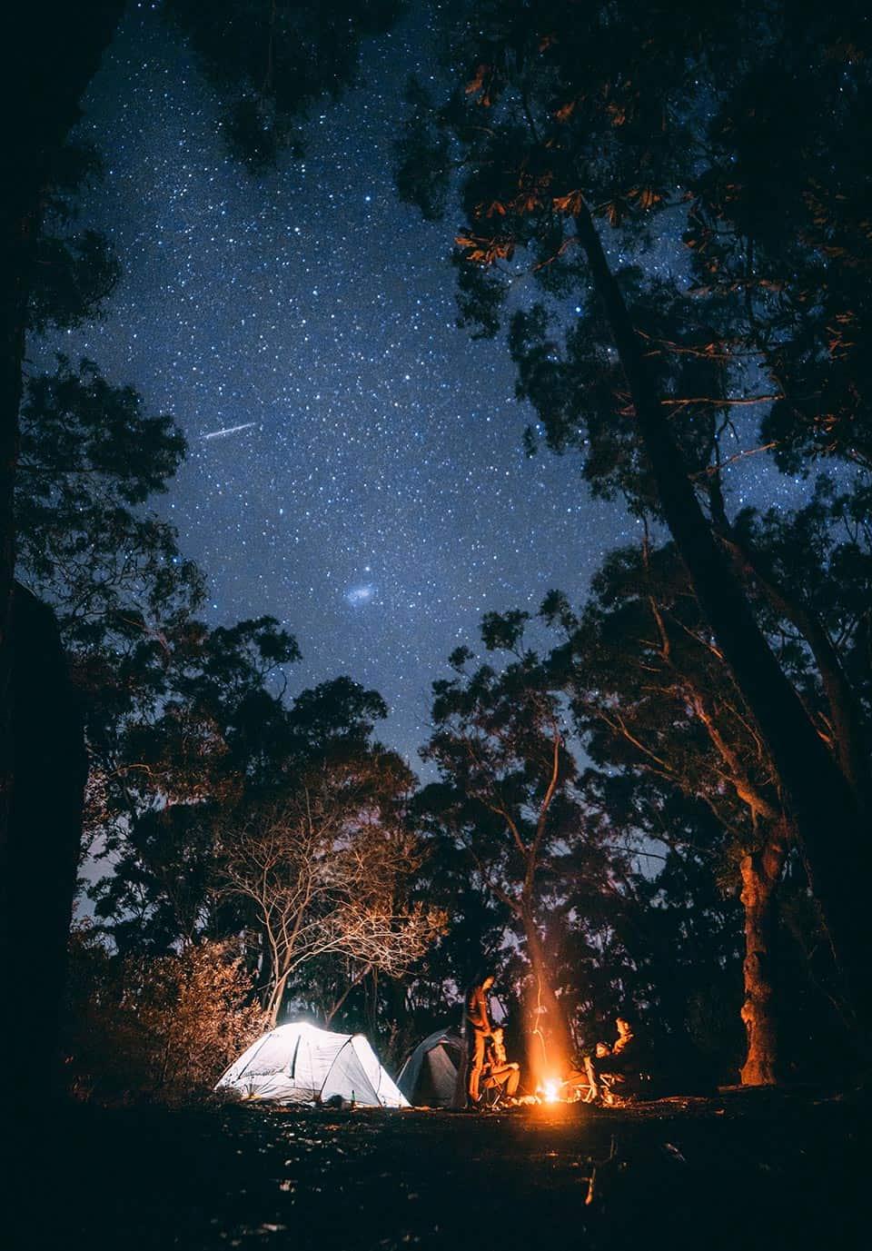 adult campfire activities