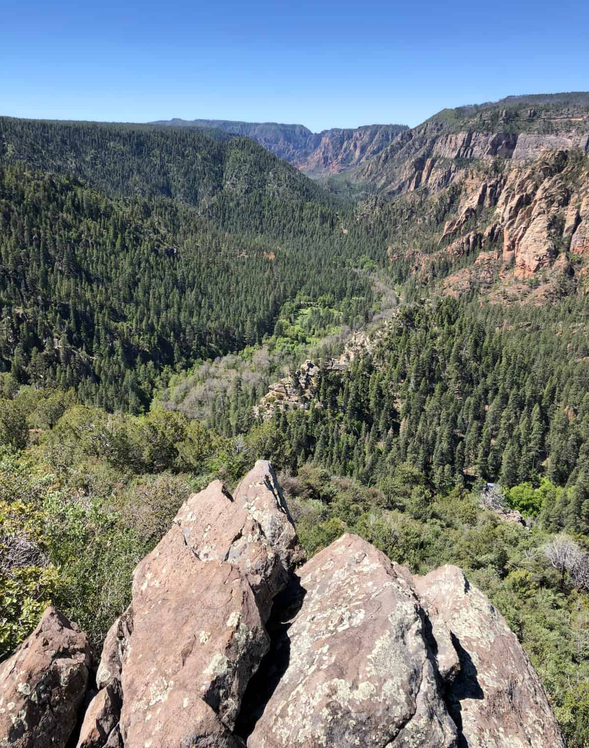 cookstove trail views