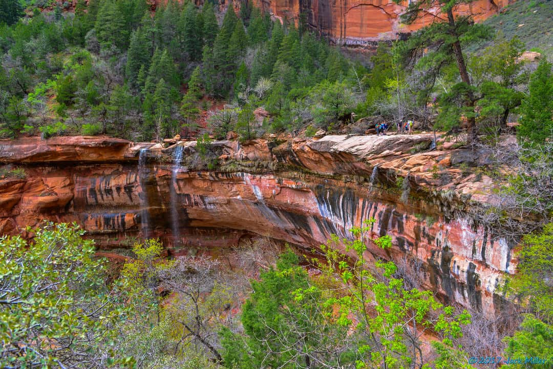 emerald pools zion