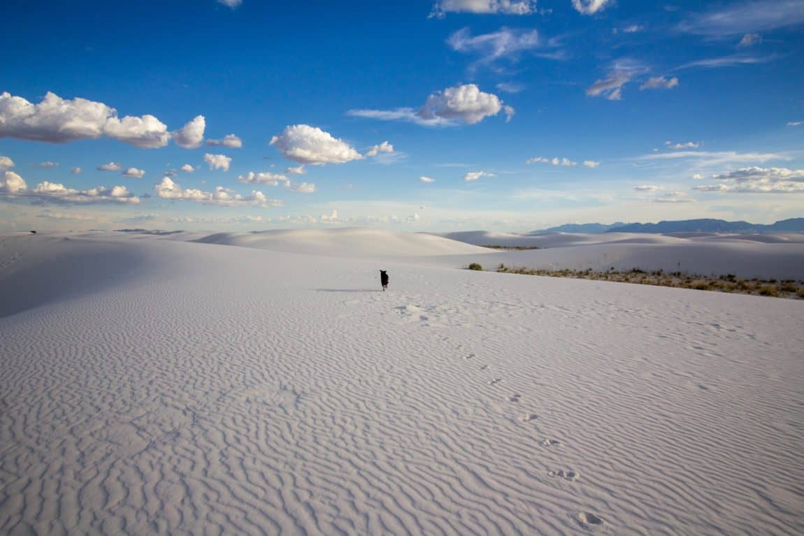 white sands national monument guide