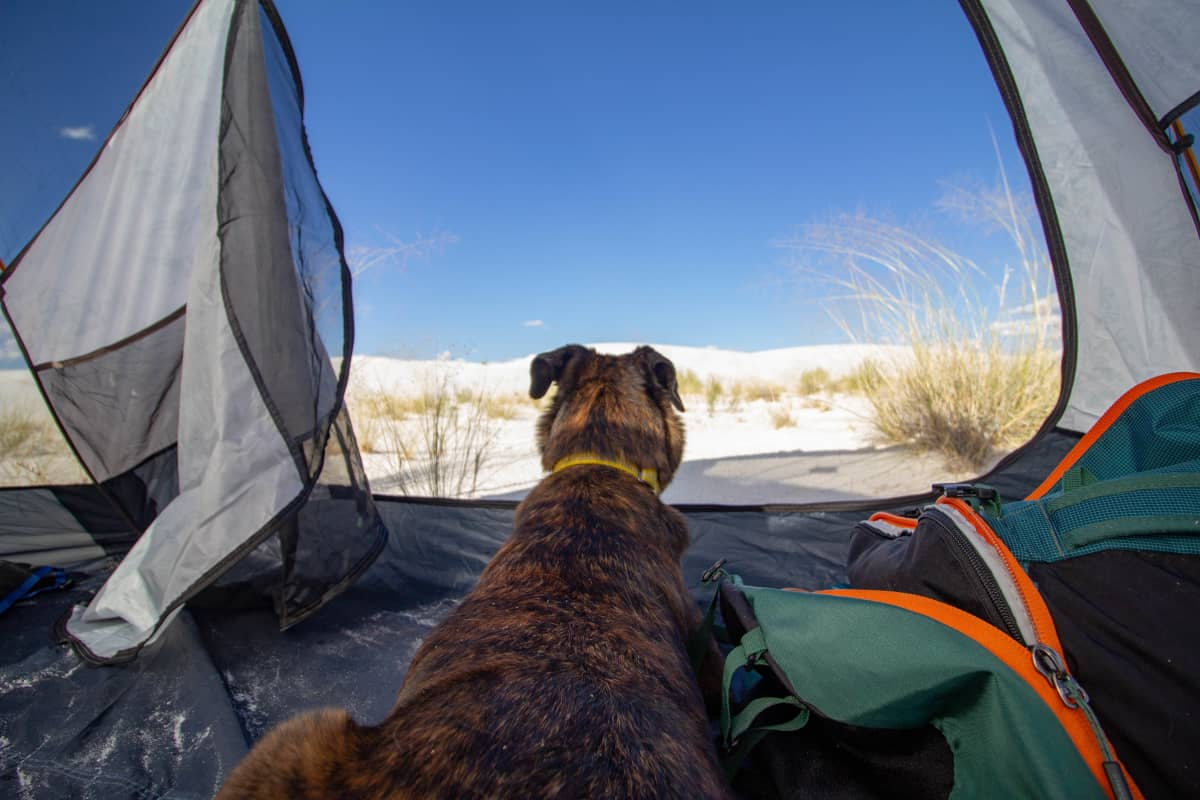white sands tent camping