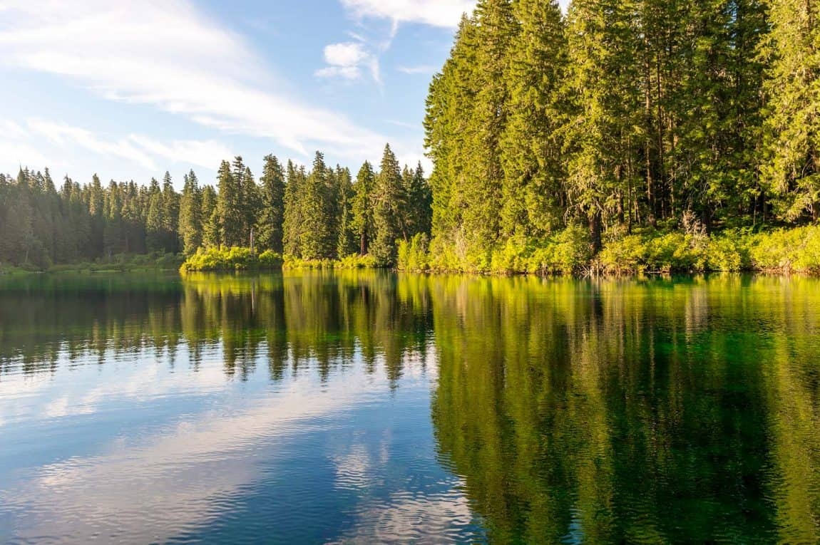 best camping willamette national forest