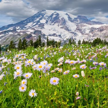 best hikes mt rainier national park