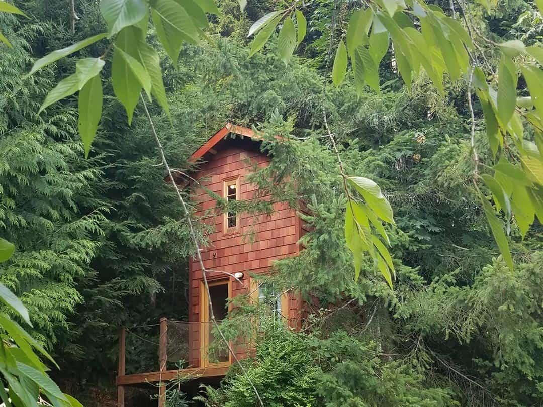 deer ridge treehouse