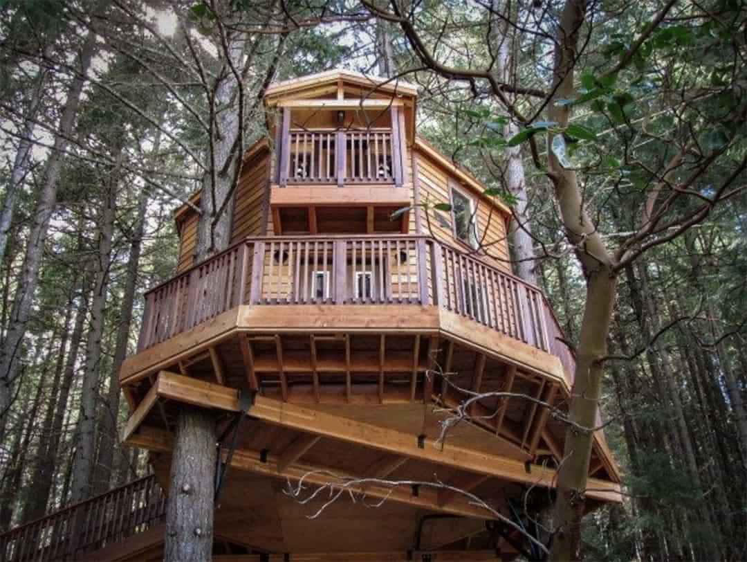 treehouse paradise