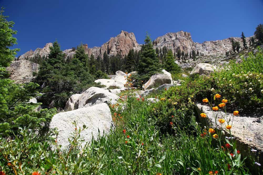 Alta Peak to Alta Meadow