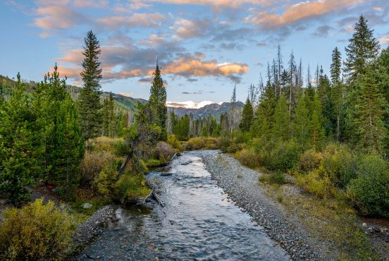 camping medicine bow routt national forests