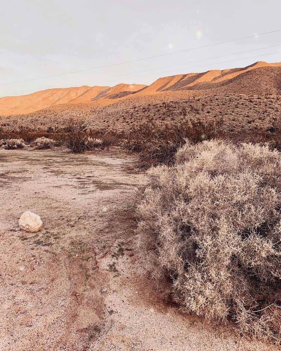 yaqui wells