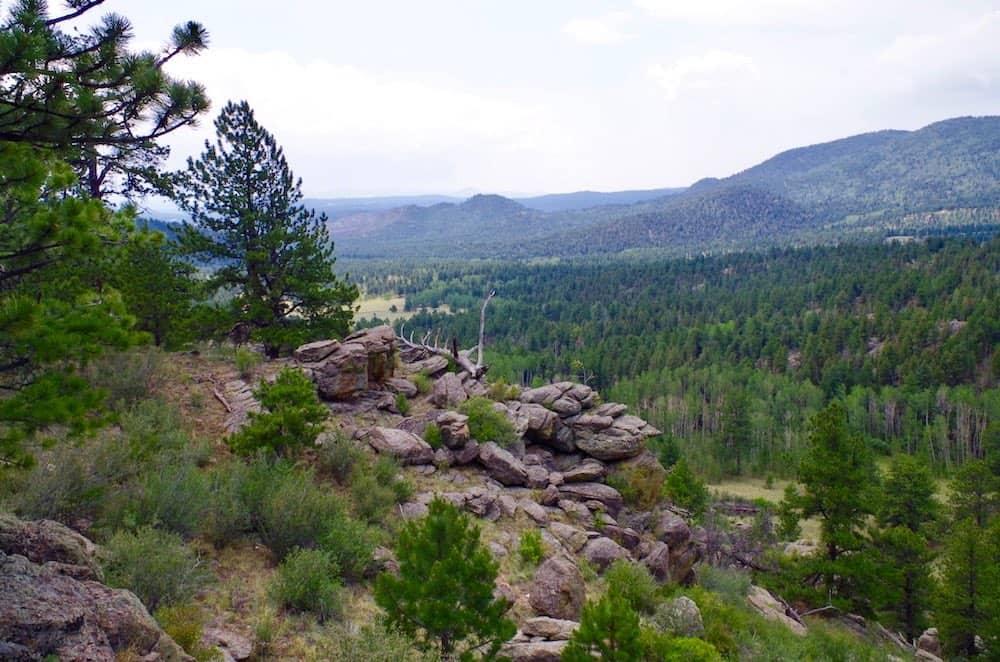 Black Tree Resort Landscape