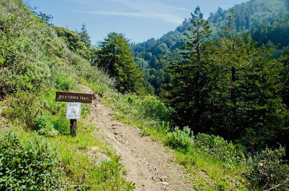 Mill Creek Trail in Big Sur