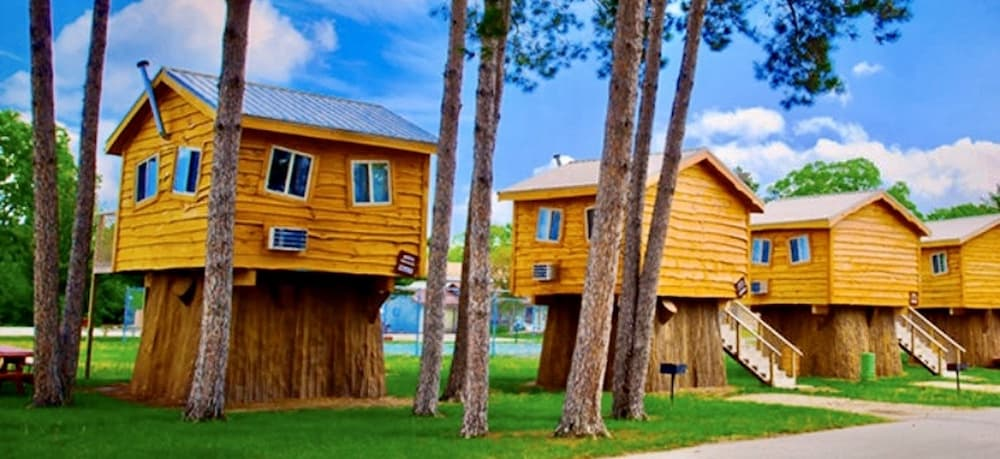 Treehouses At Mt Olympus