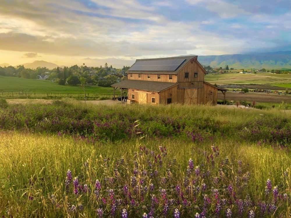 Barn vacation rental in San Luis Obispo Wine Country
