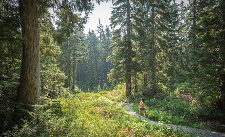 transition to minimalist running
