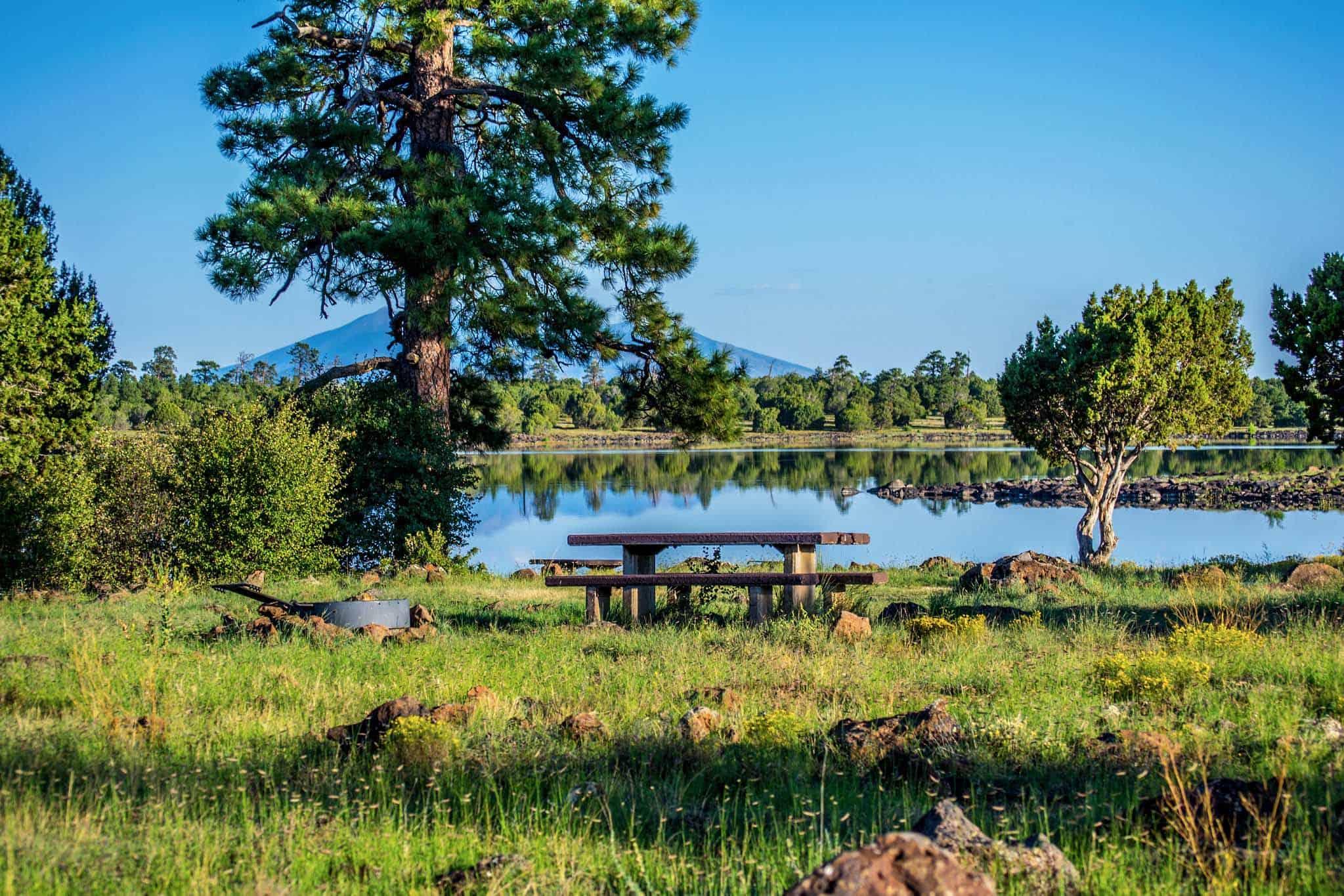ashurst lake camping arizona