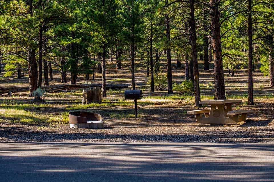 bonito campground flagstaff