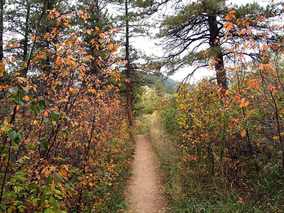 greyrock trail fort collins