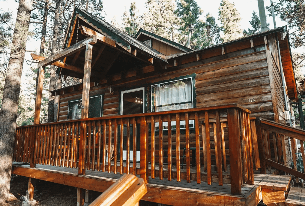 honey bear cabin