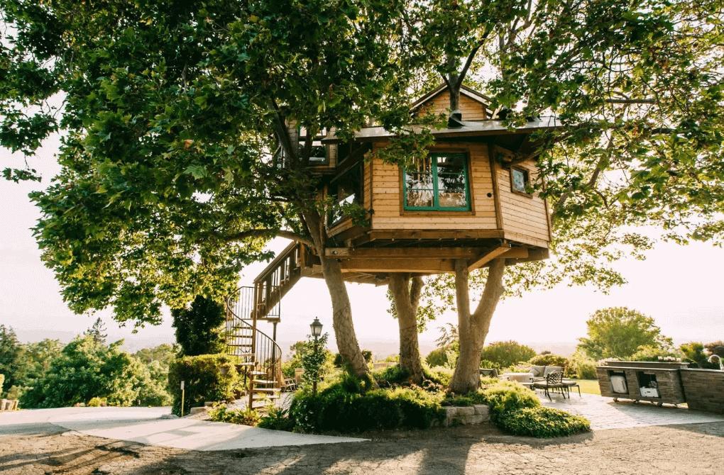 san jose treehouse