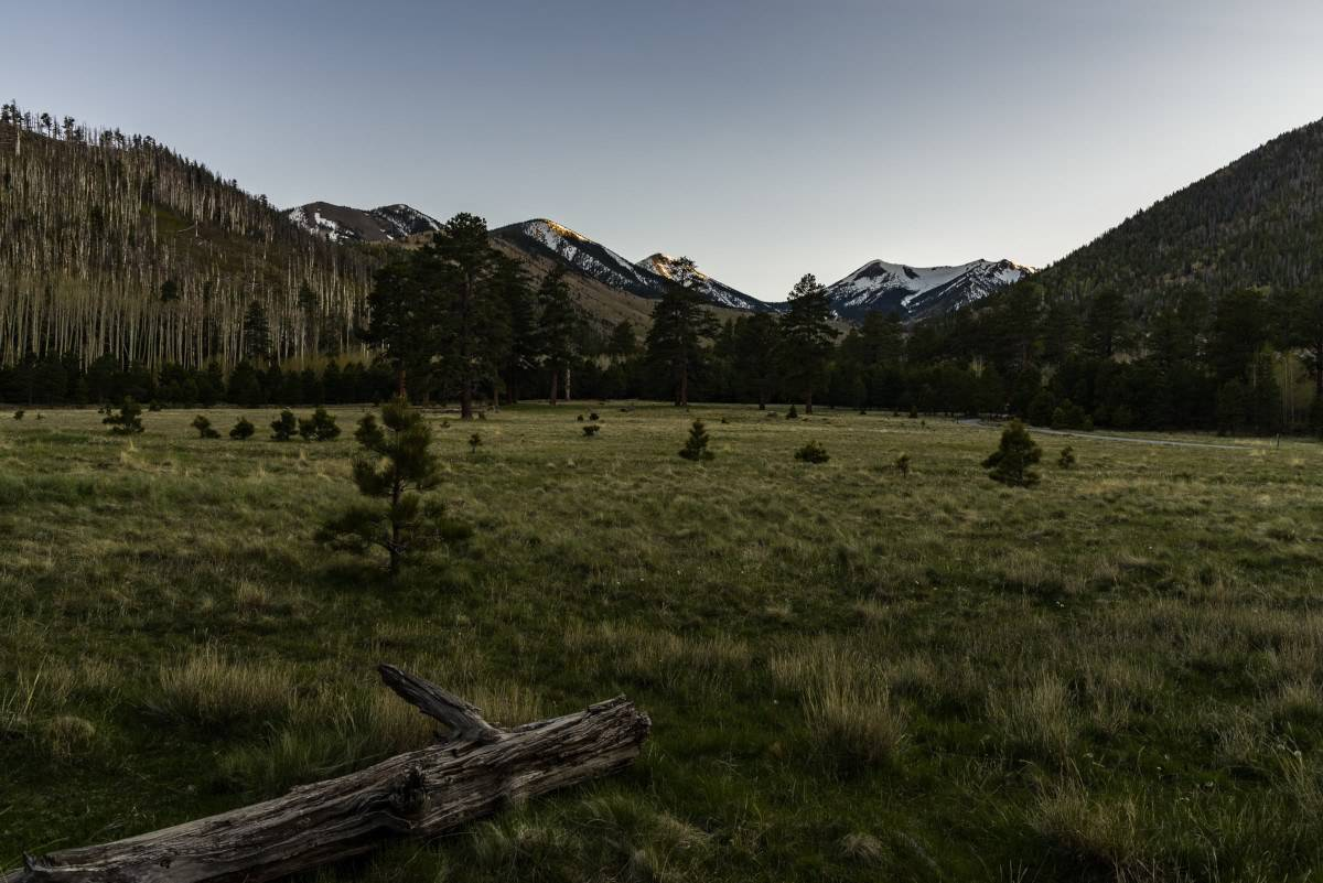 lockett meadow arizona