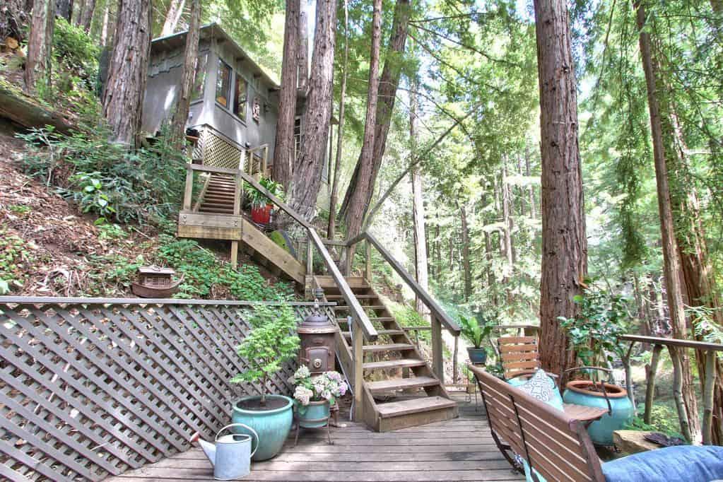 redwoods cabin rental