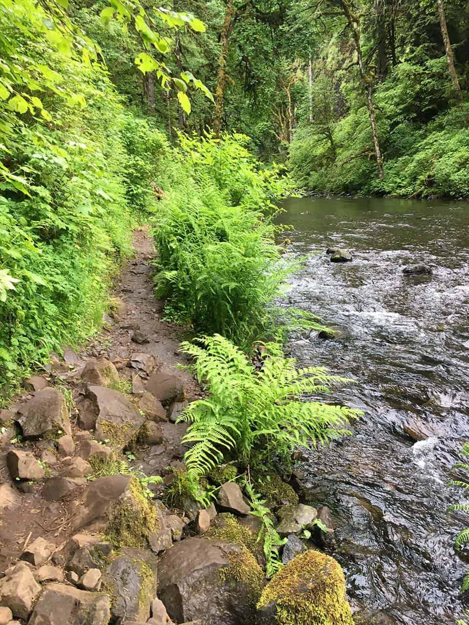 Abiqua Falls Riverside Trail