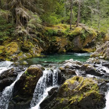 opal creek trail oregon