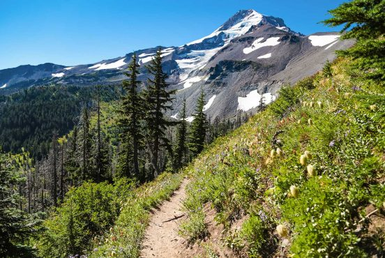 timberline trail mount hood or