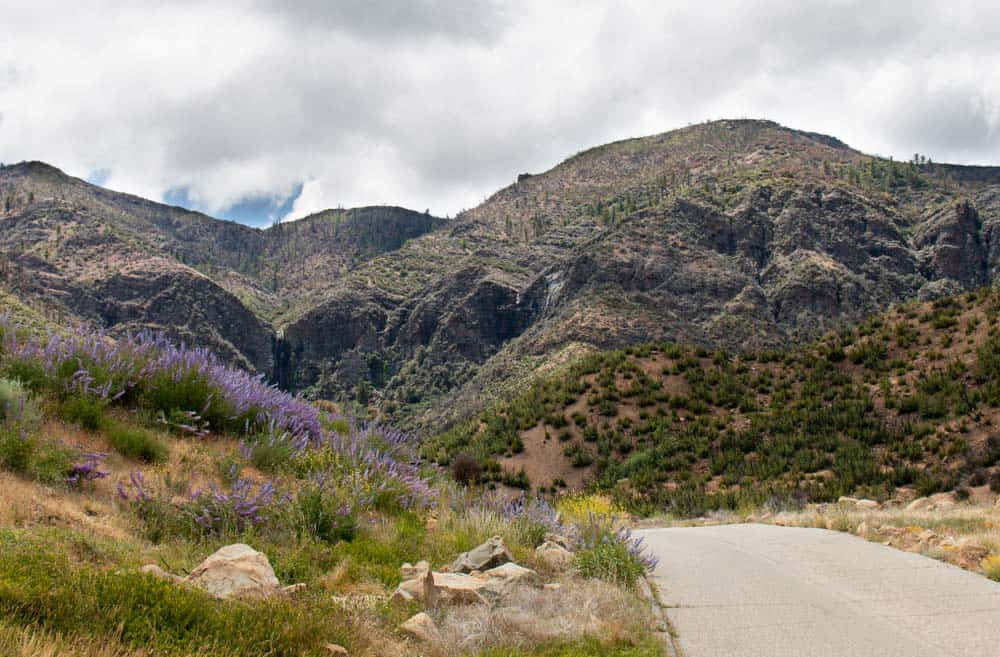Rose Valley - Jacinto Reyes Scenic Byway