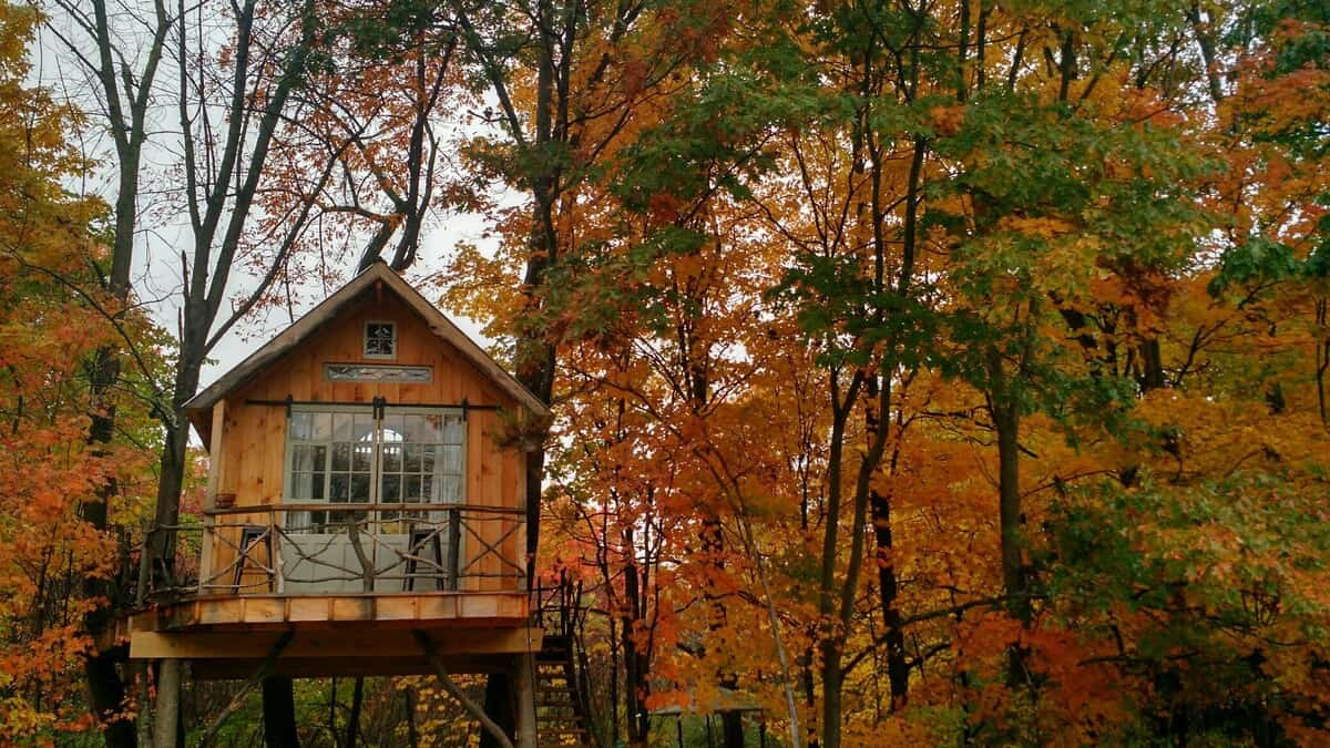 Whispering Wind Treehouse ny