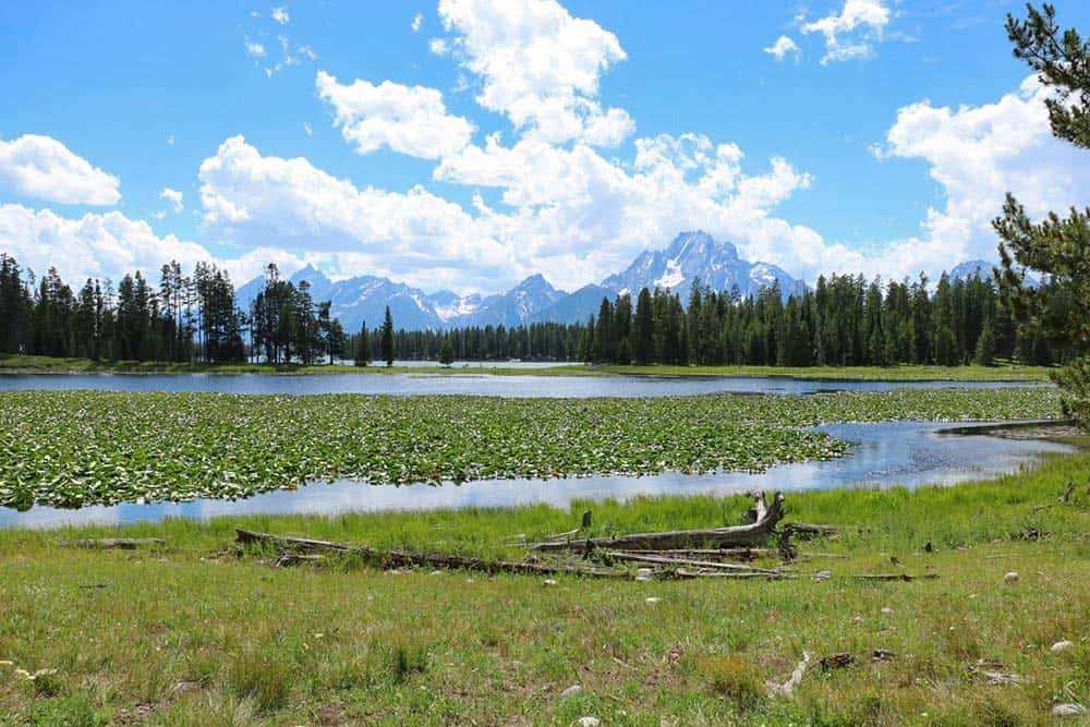 hermitage point trail grand teton