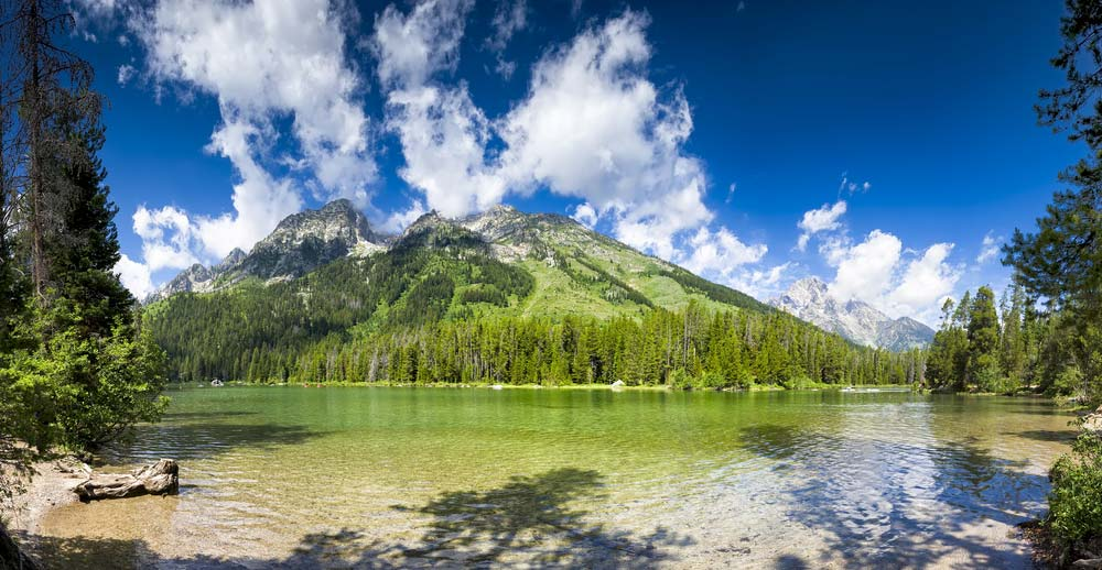 string lake grand teton