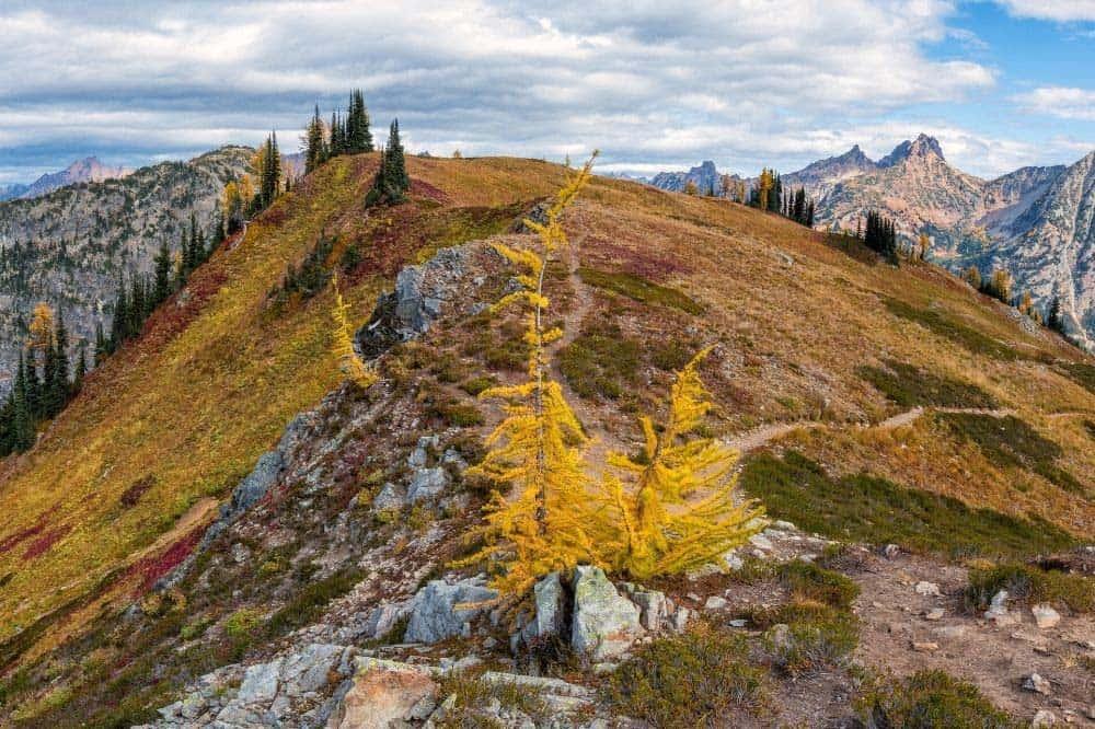 Maple Pass Trail North Cascades