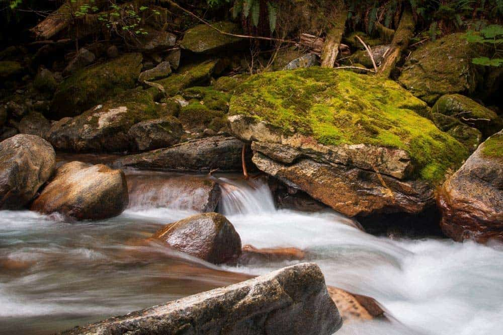 Newhalem Creek