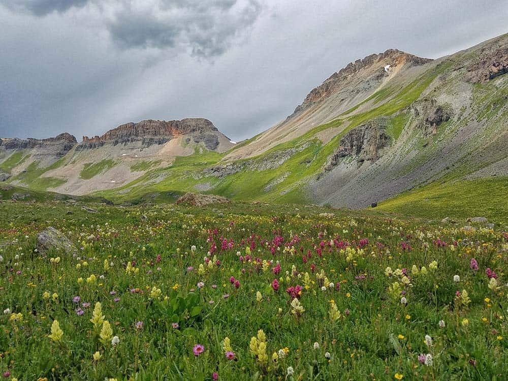 ice lake basin wildflower season