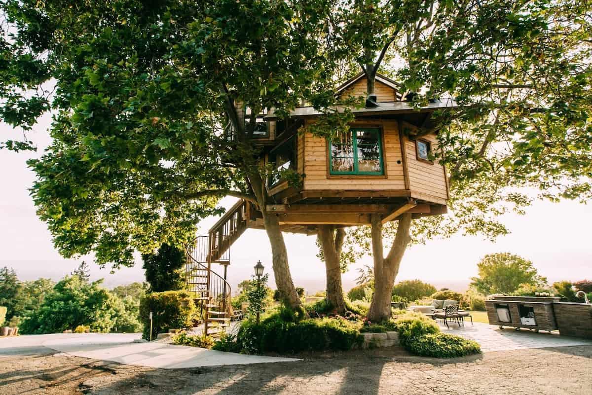 san jose ca treehouse
