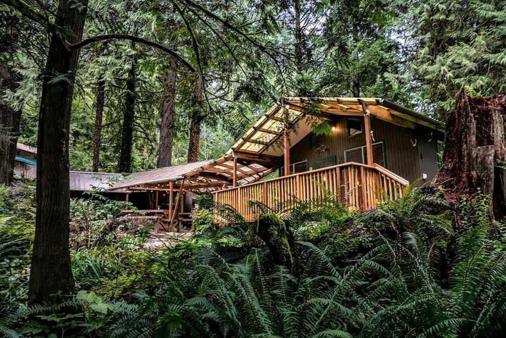 secluded washington cabin creekside